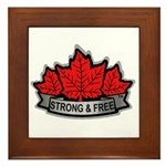 SAFE Logo 2010 v8 no CANADA Framed Tile