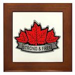 SAFE Logo 2010 v8 no CANADA Framed Tile