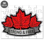 SAFE Logo 2010 v8 no CANADA Puzzle