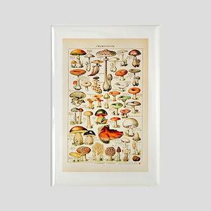 Vintage Mushroom Print Magnets