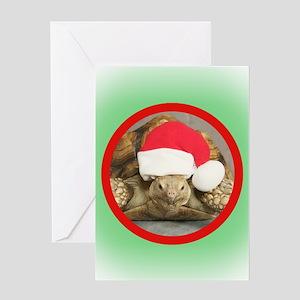 Tortoise, round image Greeting Card