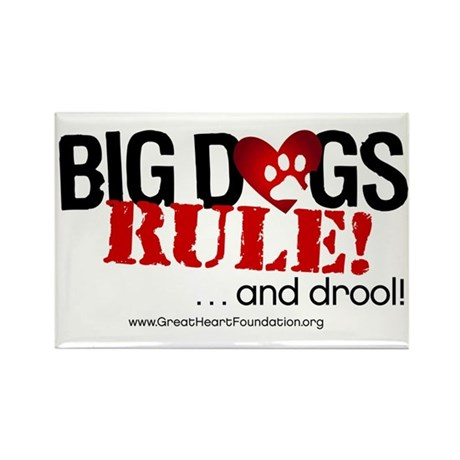 Big Dogs Rule Rectangle Magnet (100 pack)