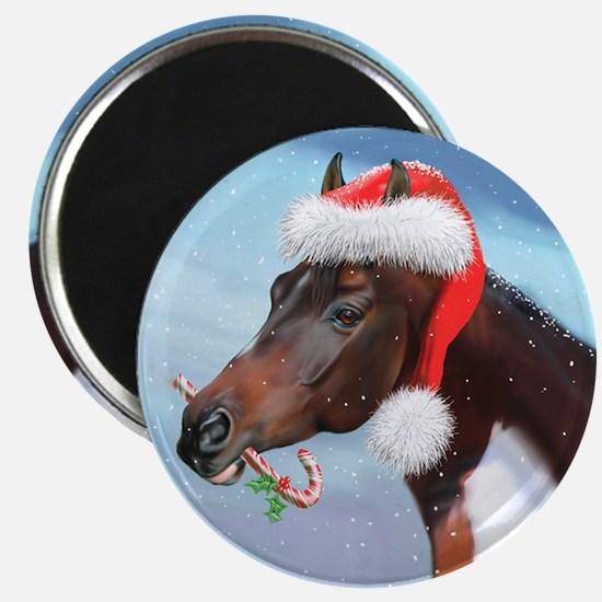 Sky King Christmas Magnet