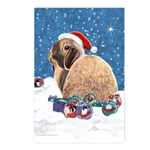 Bunny Winter Holiday Postcards (Package of 8)