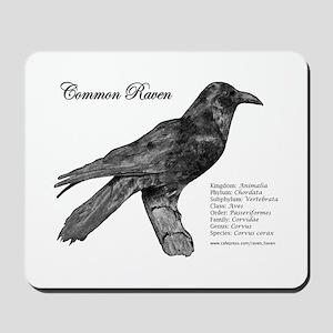 Common Raven - Mousepad
