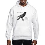 Common Raven - Hooded Sweatshirt