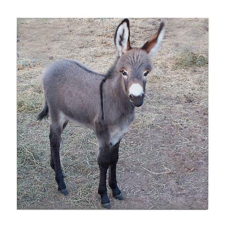 burro Tile Coaster