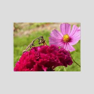 Praying Mantis Dining on a Moth 5'x7'Area Rug