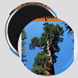 Sequoia National Park (Vertic Magnets