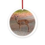 Fawn Deer Keepsake Ornament