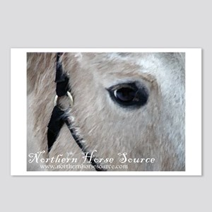 Northern Horse Postcards (Package of 8)