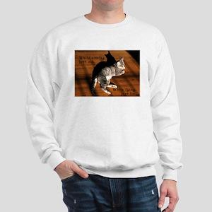 Sit or Lie Tabby Kitten Sweatshirt
