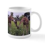 Giraffes Feeding - Mug
