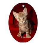 Hemingway Kitten 2004 Oval Ornament
