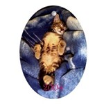 Sleeping Kitten Christmas 2004 Oval Ornament