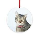 Tabby Cat Christmas 2004 Ornament (Round)