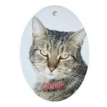 Tabby Cat Christmas 2004 Oval Ornament