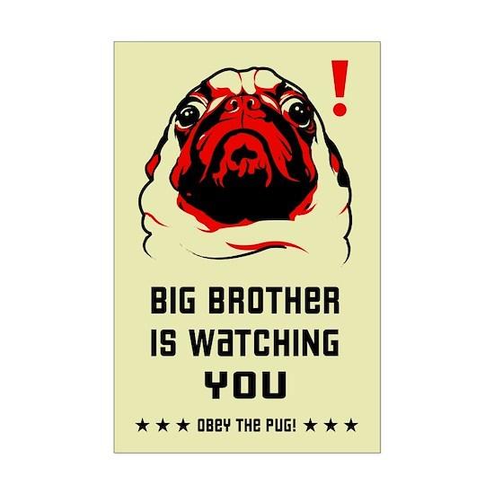 pug_big_bro_mini