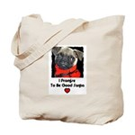 I LOVE WINTER/PROMISE TO BE GOOD SANTA  Tote Bag