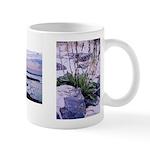 Sunset and Rocks - Mug