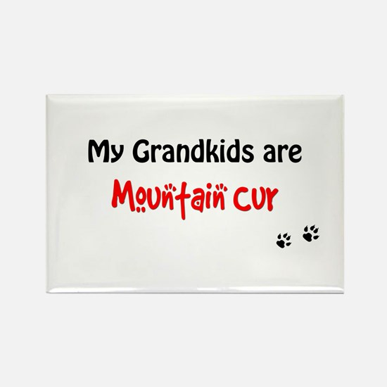 Cur Grandkids Rectangle Magnet
