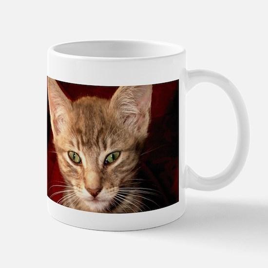 Grey Tabby Kitten Mug