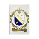 LEMIRE Family Crest Rectangle Magnet (10 pack)