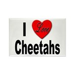 I Love Cheetahs Rectangle Magnet (10 pack)