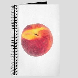 Atlanta Fuzzy Peach Journal
