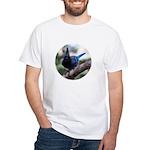 Steller's Jay Hollering White T-Shirt