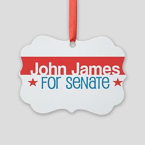 John James Michigan 2018 Senate Ornament