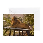 Lion on a Car Greeting Card