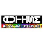 Adjust Your Perspective Bumper Sticker (10 pk)