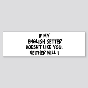English Setter like you Bumper Sticker