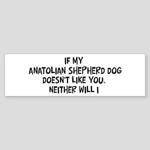 Anatolian Shepherd Dog like y Bumper Sticker