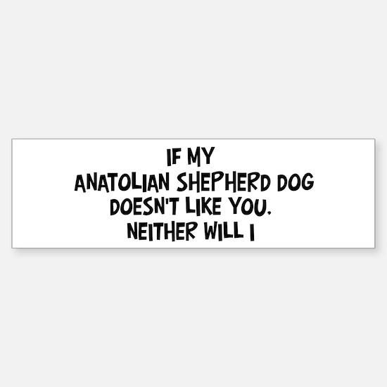 Anatolian Shepherd Dog like y Bumper Bumper Bumper Sticker