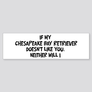 Chesapeake Bay Retriever like Bumper Sticker