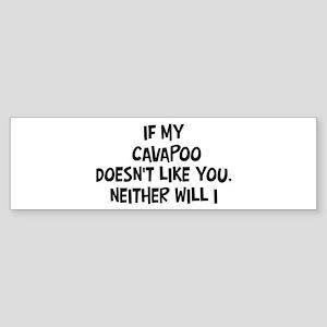 Cavapoo like you Bumper Sticker