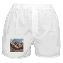 brown bear 2 Boxer Shorts
