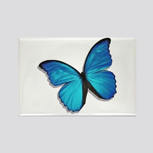 Blue Morpho Butterfly Rectangle Magnet