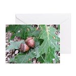 Acorns and Oak Leaves Greeting Cards (Pk of 10)
