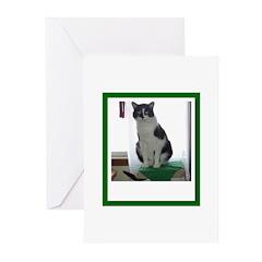 Tuxedo Cat Greeting Cards (Pk of 10)
