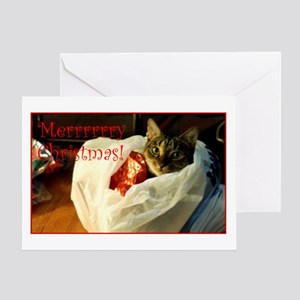 Expressively You! Cat in the Bag Greeting Card