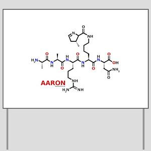 Aaron name molecule Yard Sign