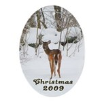 Deer at Christmas Oval Ornament