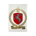 LETRANGE Family Crest Rectangle Magnet (10 pack)