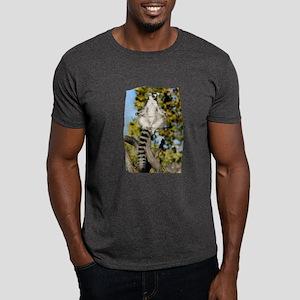 Sunning Ringtail Dark T-Shirt