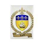 LIZOTTE Family Crest Rectangle Magnet (100 pack)
