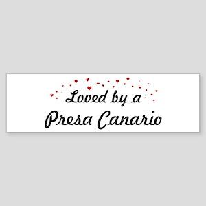 Loved By Presa Canario Bumper Sticker