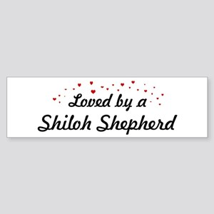Loved By Shiloh Shepherd Bumper Sticker